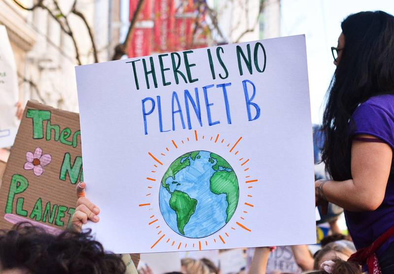 Springload joins the global climate strike